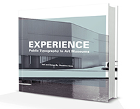 Experience: Public Typography in Art Museums