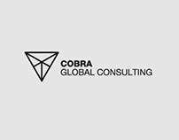 Cobra Global Consulting Brand Development