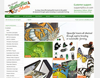 The World of Butterflies and Moths