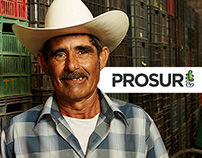 PROSUR website