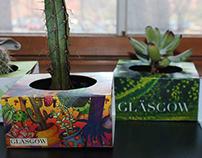 Glasgow Designer Succulents