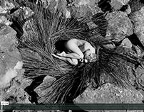 Vidéographie/art vidéo