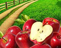 Jerry Lofaro Apples