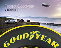 PROTECT ECOMMERCE GOODYEAR