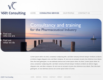 Voet Consulting Website