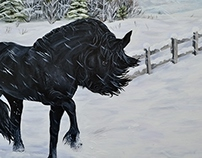 Friesian in the Snow
