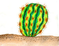 Insults: Cacti