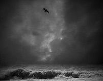 Land, Sea and Sky