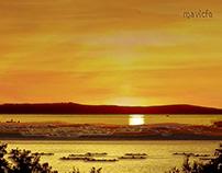 Sunset_Project 4_ Summer Dream