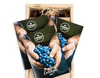 VINDORADO wijnimport - re-brand