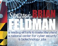 Brian Feldman Political Mailer