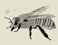 Barcode Bee