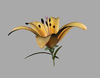 Flower_Growth_Animation