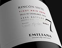 EMILIANA | Rincón 7
