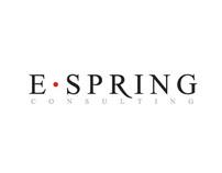 E-Spring Consulting