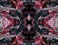 Abstract Series no.8