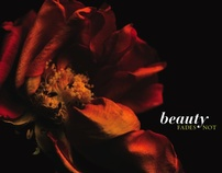 Beauty Fades Not (Photography Series)
