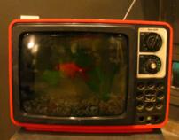 Fish Tank T.V