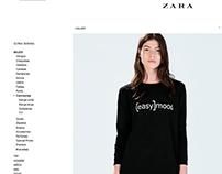 Product Development for Zara Basic - Winter 14/15