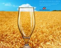 Barley field / Beach