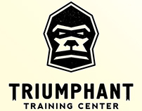 Logo design for TRIUMPHANT TRAINING CENTER.
