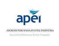 APEI - A Security Company Association