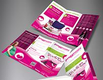 Preggonista Trifold Brochure and Flyer Design