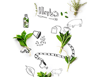Infographic about herbs