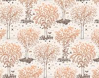 Pattern/ Estaciones