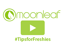 Moonleaf #TipsForFreshies 2013