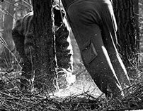 Slovakian lumberjacks, lesnici
