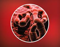 Проблема: Вирус Эбола