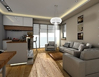 Private Flat 65m2 - Living room with kitchenette