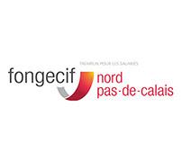 Fongecif - Rapport annuel 2013