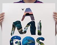 Design for Coco's Island Campaign