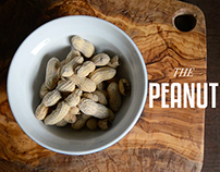 The Peanut: Motion Infographic