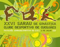cartaz sarau ginástica 2011   gymnastic poster 2011