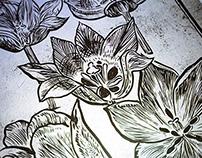Botanica - Tulips I