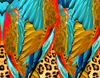 Tropical Birds for Swimwear