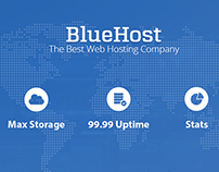 Hosting Provider Solution | BlueHost Professional