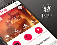 Mobile Experience for Consultants travelling