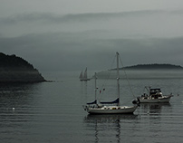Photography | Acadia