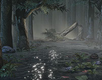 Somber Swampland