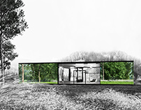 The Mirror/Glass House