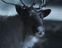 "GameStop Holiday - ""Deer Crossing"" :30 TV"