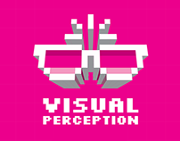 Visual Perception Book