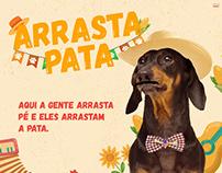Arraiá Pet - Buriti Shopping Guará