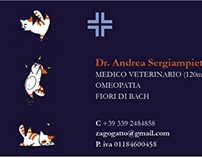 Business Card - Vet