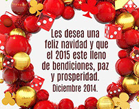 Navidad/christmas 2014