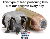 Lead Poisoning/Gun sense